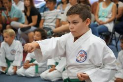 Youth Martial Arts in Fullerton & Placentia
